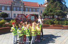 """Więcej o: """"Nakrętka dla Sandry"""" – Grupa V – Chochliki przyłączyła się do akcji"""